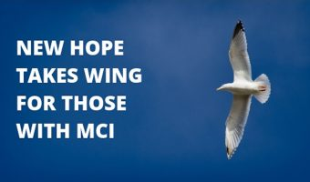 More encouraging news for people with MCI